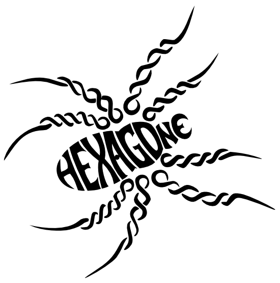 Araignée Hexagone