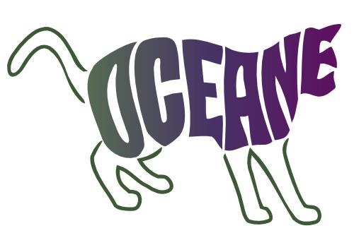 chat océane
