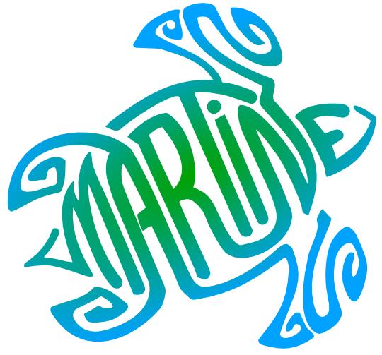 Tortue Martine